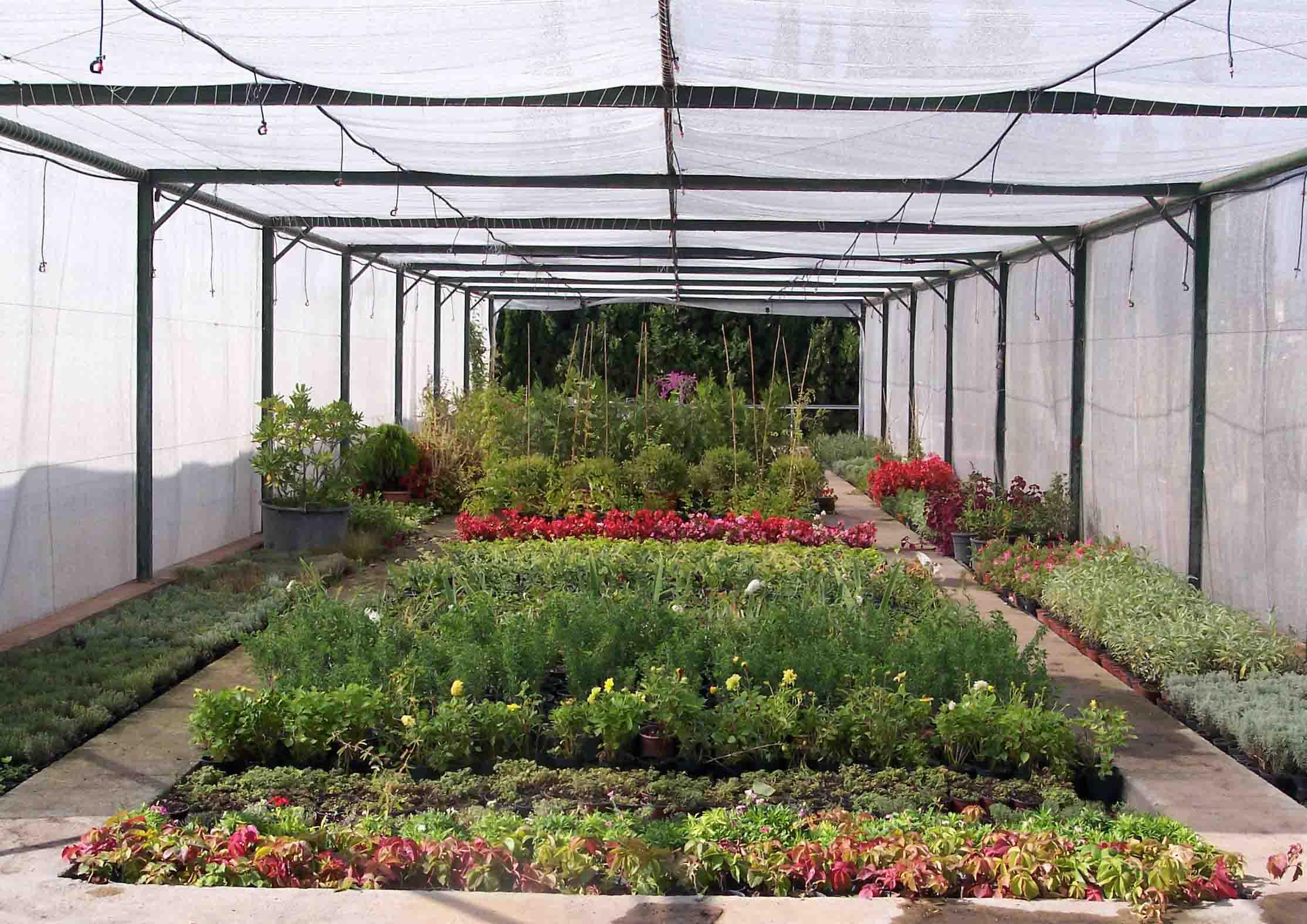 Ilba jardiner a - Centros de jardineria madrid ...