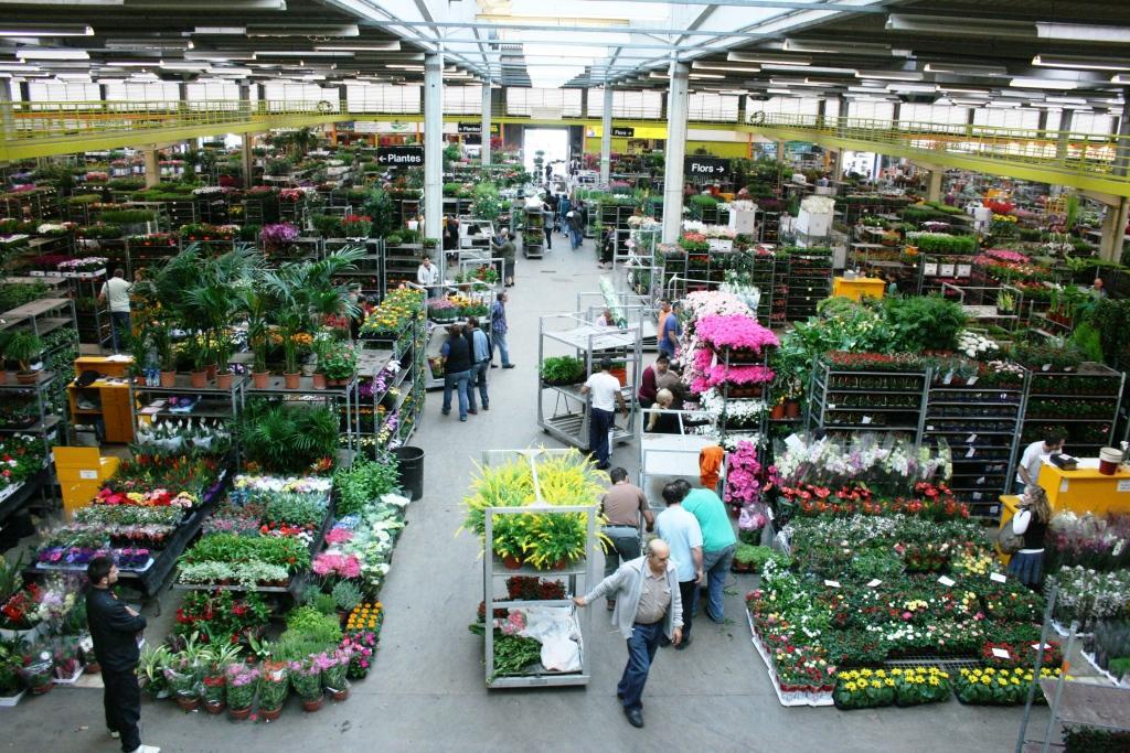 Mercat de flor i planta ornamental de catalunya for Viveros barcelona