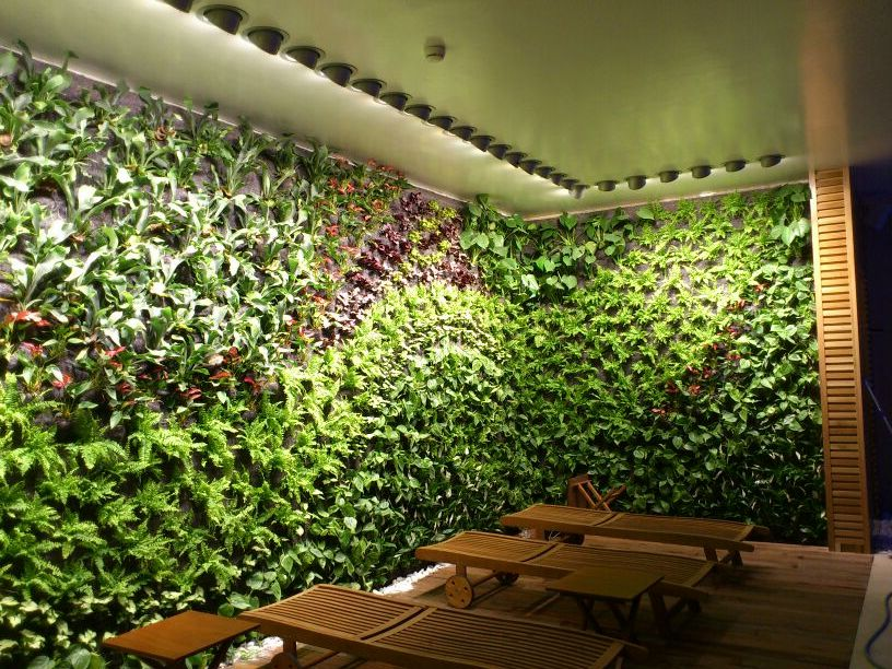 Green walls mallorca for Materiales para jardines verticales