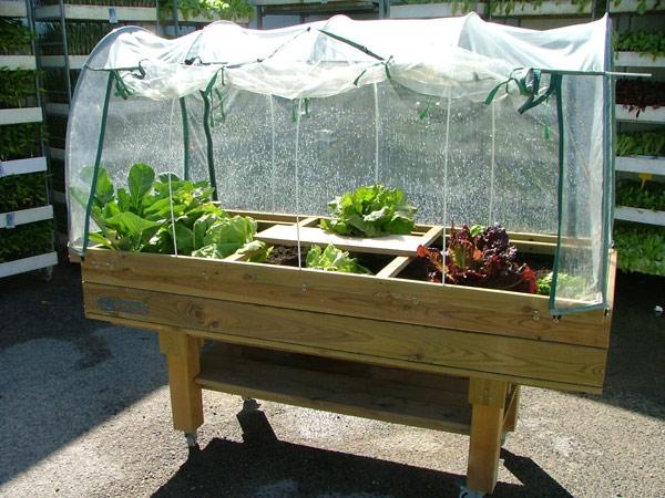 Mesa de cultivo for Mesa de cultivo casera