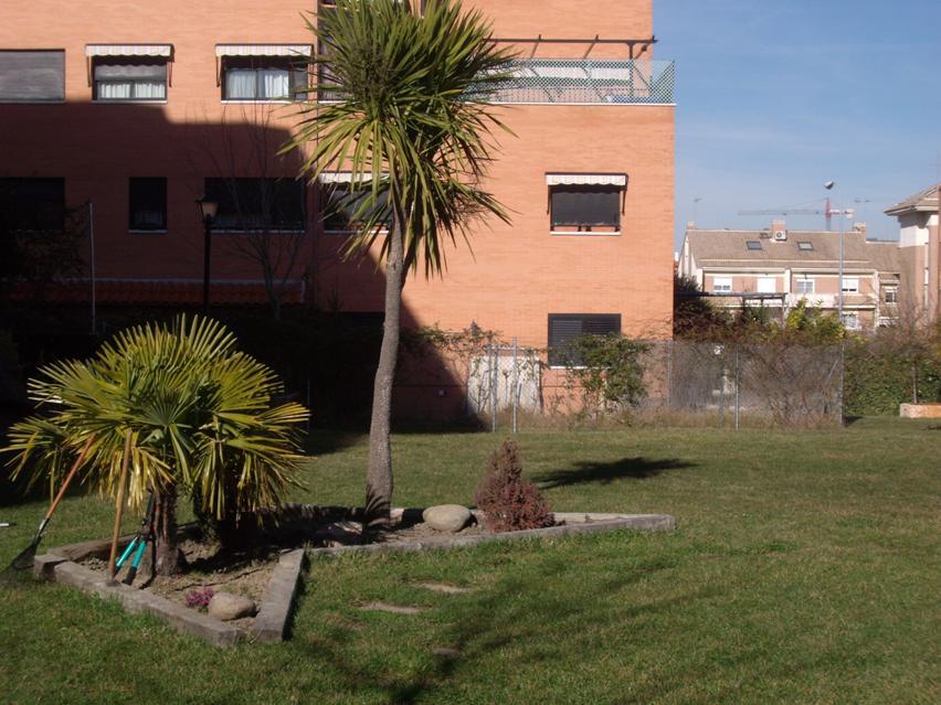 Servicio de jardiner a simasport for Servicio de jardineria