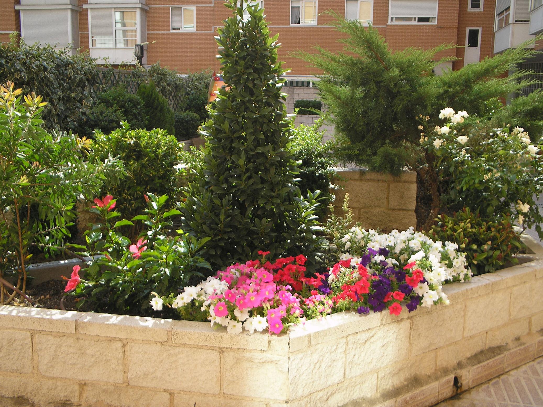 Mantenimiento de jardines y plantas de interior agro and - Jardines y plantas ...