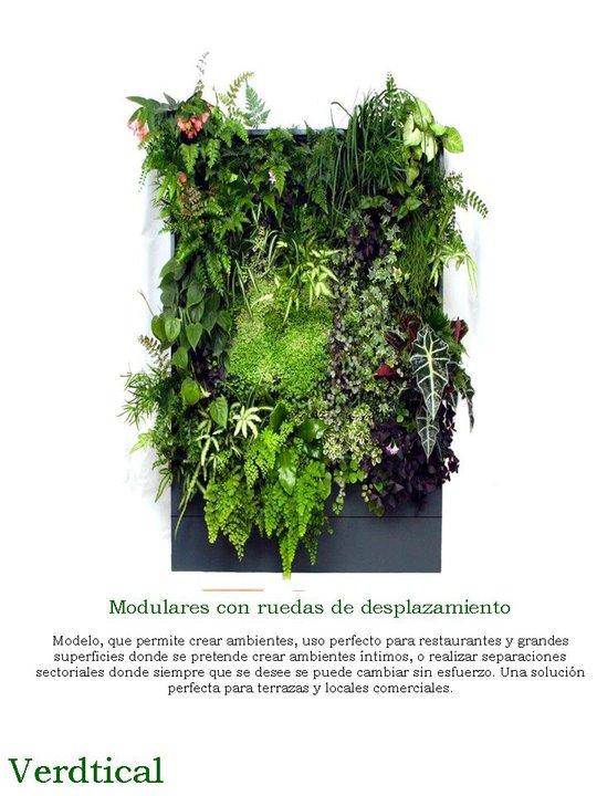 Modulo jardin vertical verdtical for Modulo jardin vertical