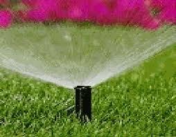 Manguera de aspersi n para un riego por goteo suave de sus for Sistema de riego por aspersion para jardin