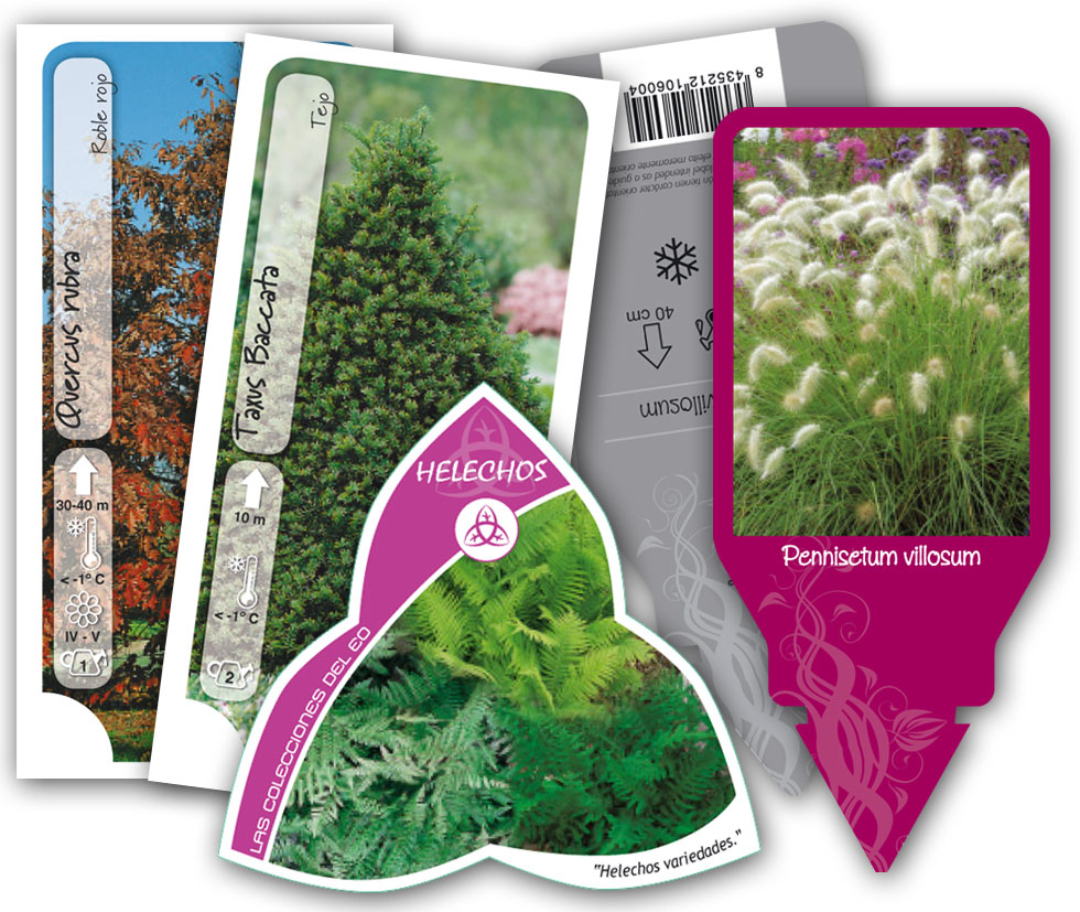 Etiquetas para plantas floramedia autos post - Etiquetas para plantas ...