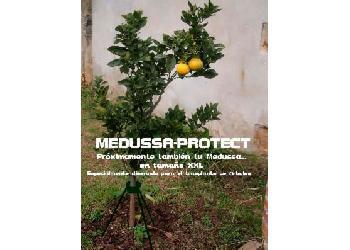 Medussa-Protect se abre paso entre los profesionales del sector con su innovador tutor para árboles.